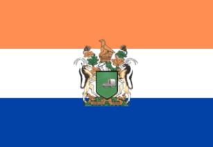 ANPflag4