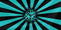 Ninjasflag