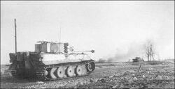 Tigers-firing