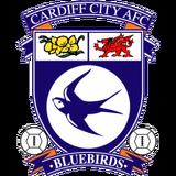 Cardiff-city1