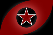 ICSN flag