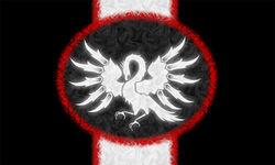 Bdcflag-450