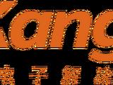 Kang Tao