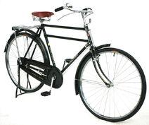Bicicleta-flying-pigeon
