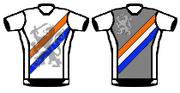 OCM Nederlandse shirts