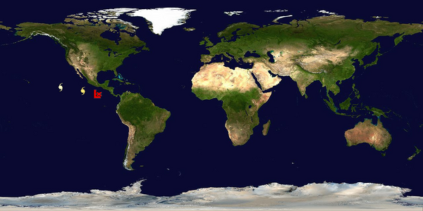All global storm positions. Due to our guidelines, not all storms are forecasted on.