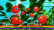 WE ARE THE BERRYKINS