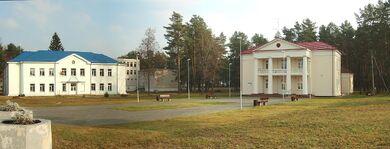 Baltoji voke Salcininku 2011