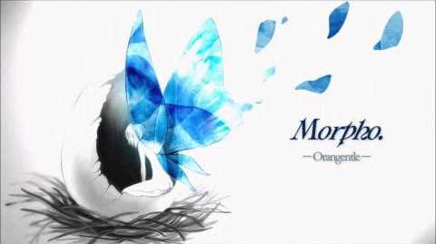 Cytus orangentle - Morpho