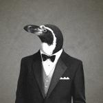Jamez42's avatar