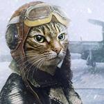 Volzhanin's avatar