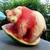 Walter The Watermelon