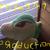 Pikachu5747