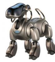 Rodri cyberdog bot