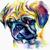 Miss purple pug
