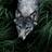 Eddard Reed's avatar