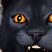 Wanwa41's avatar