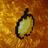 Amwl415's avatar