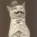 Kalinine's avatar