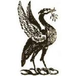 Nkershaw's avatar