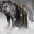 Eddard Nievenegra