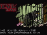 List of Darker than Black: the Black Contractor Episodes