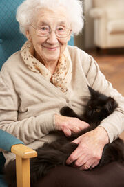 Old-person-and-cat