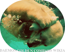 Wikia-Visualization-Main,daemongoldencompass