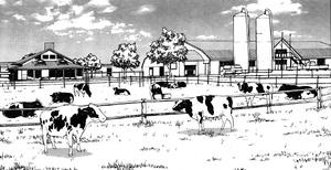Farm8