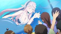 AnimeMeroDolphins