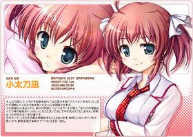 Daitoshokan-no-Hitsujikai-Character-Visual-Nagi-Kodachi