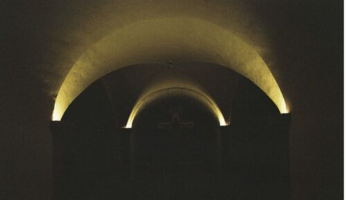 The light-X