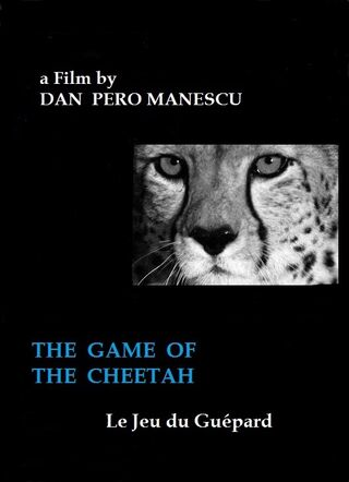 CHEETAH - GAME