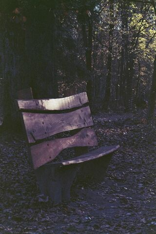File:Witch-Bench.JPG
