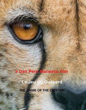 Cheetah-XYZ