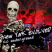 New York EVOLVED (PS3)