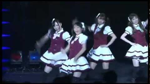 Danceroid Concerts