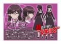 Promo Profiles - Danganronpa the Animation (Japanese) - Toko Fukawa