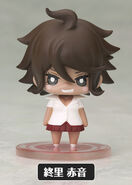 One Coin Mini Akane Owari