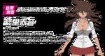 Danganronpa 3 Personality Quiz (Japanese) Akane Owari