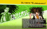 Promo Profiles - Danganronpa 1.2 (English) - Yasuhiro Hagakure