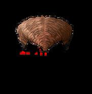 DRAE Mondo's wig