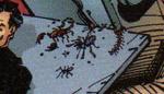 Poisonousbugs