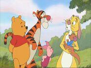 Winnie i els sues amics