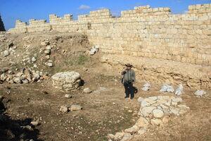 שרידי הארמון בחלק הצפוני - צביקה צוק בתמונה