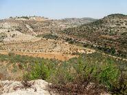 Valey cana from Elmatan 2