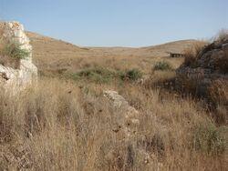 The train to A-Luban - bridge on Wadi El Arub 4 (Large)