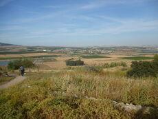 Tel Izr'ael 05
