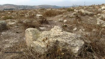מזבח בתל דותן2013-11-22 (286) (Medium)
