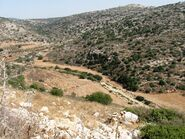 Valey cana from Elmatan 1